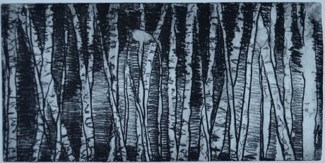 Genom skogen, mjukgrundsetsning, 2011